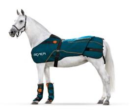 Bemer Horse